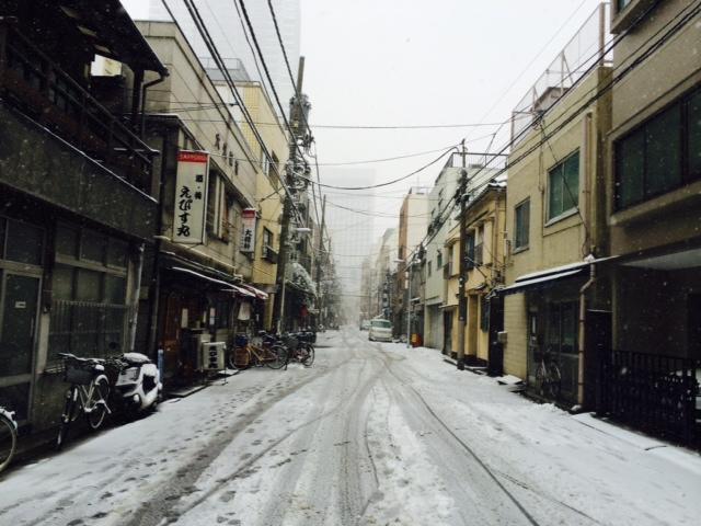 大雪ですね…。